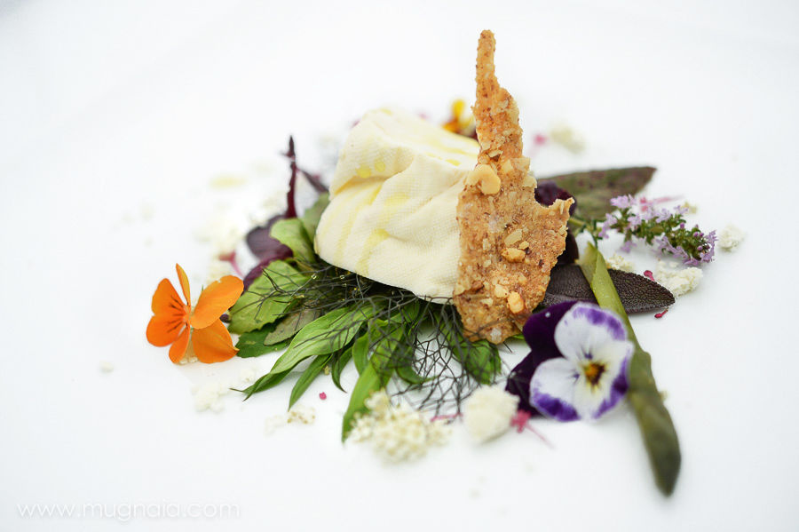 4 tometta fresca della valchiusella, erbe spontanee, polvere di olio di noci