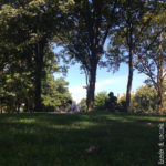 Central Park - Newyorkers