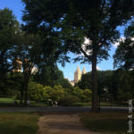 Central Park - Vista