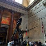 New York - Ingresso del Museo di Storia Naturale (interno con T-Rex)